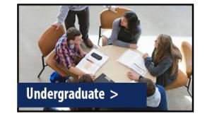 Academic_Undergraduate